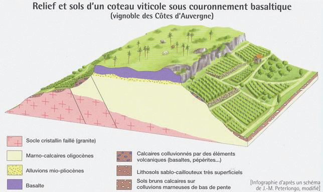 Relief et sols d'un coteau viticole sous couronnement basaltique (vignoble des Côtes d'Auvergne)